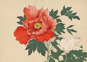 Tree Peonies Orange/Blush, Woodblock Print, 14″ x 19.5 ...
