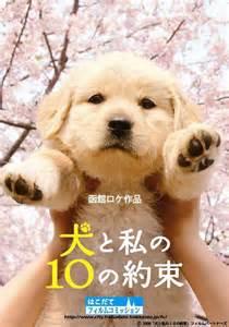 10 Promises to My Dog Movie