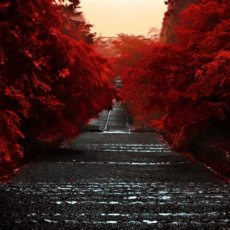 epic japanese nature wallpapers top  epic japanese