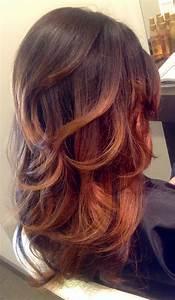 Ombré Hair Cuivré : tie and dye cuivr coiffures pinterest coiffures ~ Melissatoandfro.com Idées de Décoration