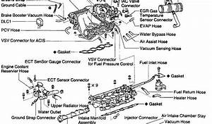 2000 Lexus Gs300 Hoses Diagram  Lexus  Wiring Diagrams