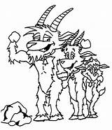 Billy Coloring Goat Goats Assembled Tocolor sketch template