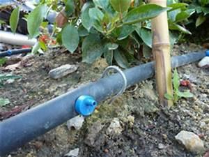 Arrosage Goutte à Goutte Potager : goutte goutte jardin ~ Dailycaller-alerts.com Idées de Décoration