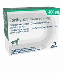 L Thyroxin Dosis Berechnen : levothyroxin natrium 400 g sotalol 80 nebenwirkungen ~ Themetempest.com Abrechnung