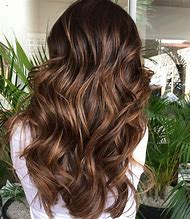 Dark Chocolate Brown Hair with Highlights