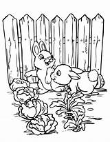 Coloring Garden Pages Printable Gardening Vegetable Rabbits Sheets Flower Clipart Check Animal Bunnies Header3 Fancy Similar Jcarousel Cat Portfolio Date sketch template