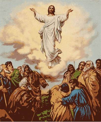 Jesus Bible Did Lies Tells Massive Resurrection