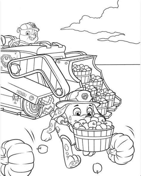 party rentals paw patrol coloring pages
