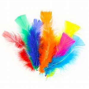 Deco Multicolore : assortiment de plumes 5 15 cm multicolore x25g perles co ~ Nature-et-papiers.com Idées de Décoration