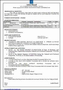 Sample Resume For It Student With No Experience Resume Blog Co Beautiful One Page Resume Cv Sample In