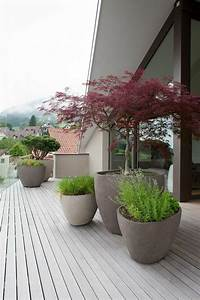 Pflanzen Für Dachterrasse : terrassen und gartengestaltung durch pflanzen aufpeppen garten und balkonideen pinterest ~ Bigdaddyawards.com Haus und Dekorationen