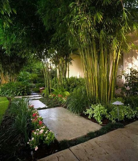 tropical backyards tropical backyard with an in ground barrier you could control invasive bamboo cool look