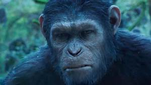 Dawn of the Planet of the Apes Trailer 2 - The Tango