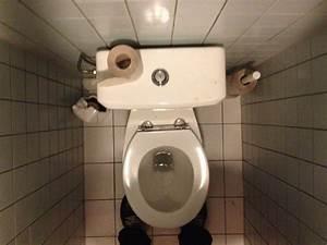 It U0026 39 S Totally Ok To Sit On Public Toilet Seats