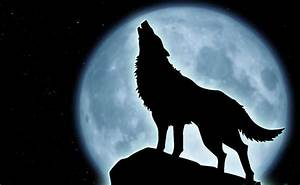Wolf howling at the moon by hmmmm1797 on DeviantArt