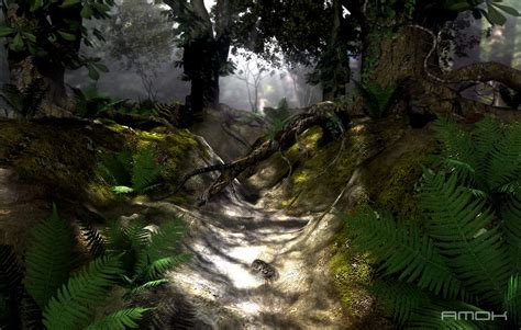 Earth Floor Biomes Tropical Rainforest by Rainforest Forest Floor Autos Post