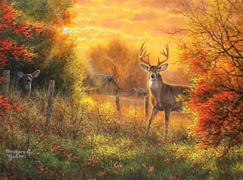 Fall Wallpaper With Animals - touch color of autumn deer animals background