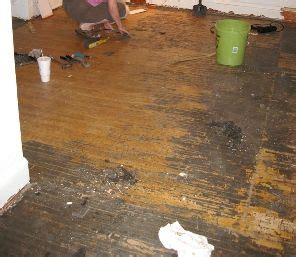 remove adhesive  hardwood floors