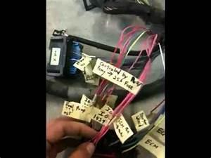 Duramax Injector Wiring Diagram : duramax lmm swap wiring part 2 youtube ~ A.2002-acura-tl-radio.info Haus und Dekorationen