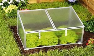 Mini Serre Jardin : mini serre de jardin en plastique js202c ~ Premium-room.com Idées de Décoration