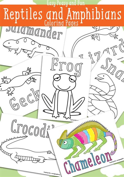 reptile coloring pages  printable easy peasy