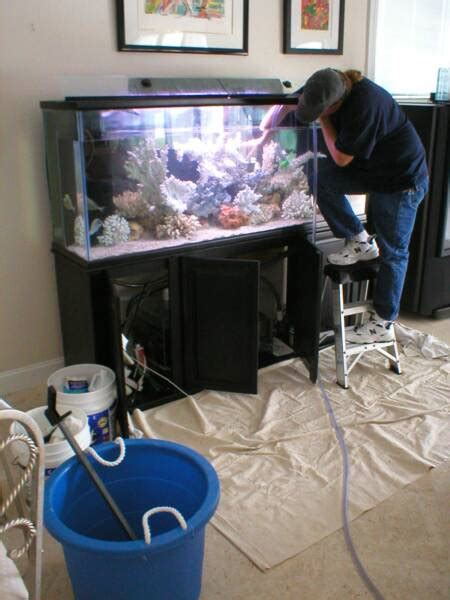 aquarium services acrylic aquariums  sale sales