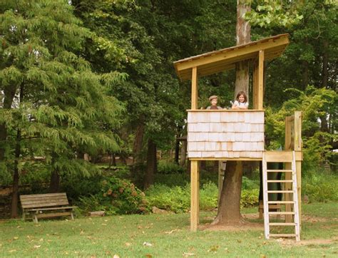 Tree Houses Your Kids Will Beg You To Build-glue