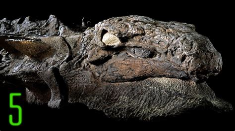 5 New Dinosaur Discoveries That Reveal What They Looked