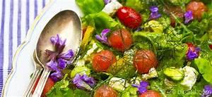 Melone Mit Schafskäse : fr hlingsfrischer salat mit fenchel erdbeeren schafsk se chia mehr birgit dbirgit d ~ Watch28wear.com Haus und Dekorationen