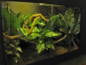 Creative Cages | Snake Cage and Reptile Cage at PVC Cages