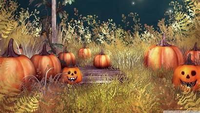 Backgrounds Halloween Fall Owl