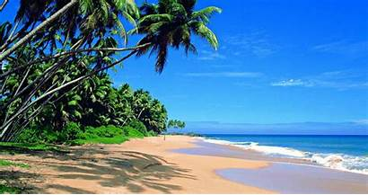 Sri Lanka Wallpapers 4k Beach Wallpaperaccess Backgrounds