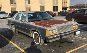 Cc Outtake  Thrift Store Fords No  4  U2013 1982 Ford Ltd Crown
