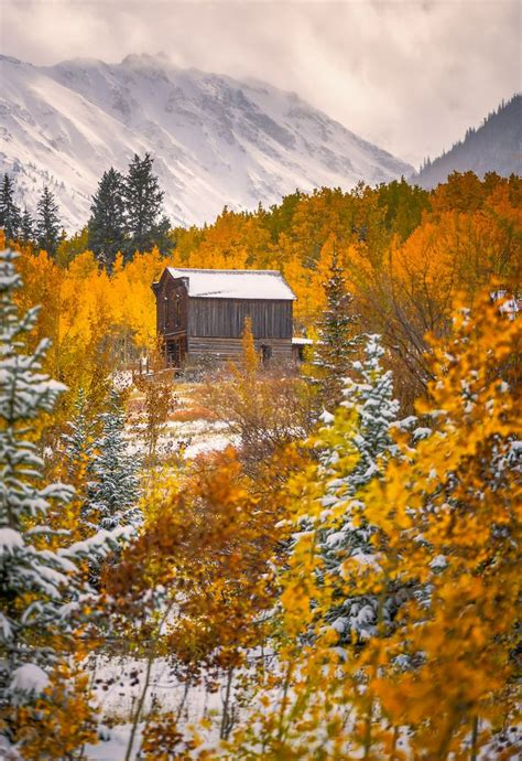Ashcroft Colorado in Fall