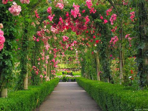 Hd Wallpaper Flower Gardens Wallpapersafari