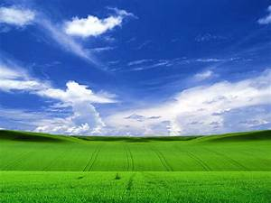 Windows Xp HD Wallpaper