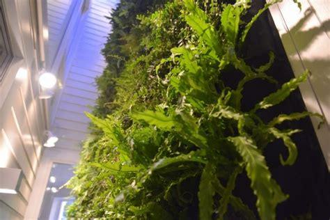 Vertical Garden Construction by Vertical Garden Lighting Guide Plants On Walls