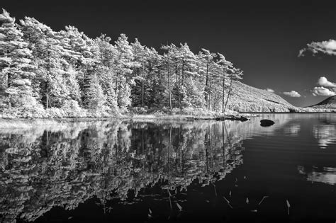 Eagle Lake Acadia National Park Infrared By Theaterwiz