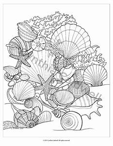 Seashells Coloring Page Instant Download Por Yetanothermomshop