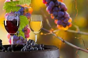 Wine Tours - Danbury Limo Services - Limo Rental ...