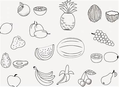 Fruit Coloring Pages Printable Salad Fruits Drawing