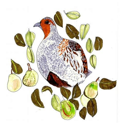 Affordable and search from millions of royalty free images, photos and vectors. Partridge in a pear tree - pack of 3 Christmas ... - Folksy