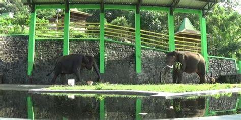 Selain dapat menikmati keindahan alam, di. 7+ Wahana Wisata Keluarga Asik di Waduk Gajah Mungkur ...