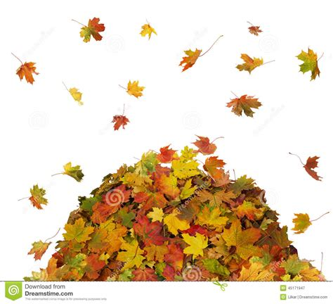 falling clipart pile fall leaves pencil   color