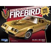 1979 Pontiac Firebird In Big Scale 1/16 Fs