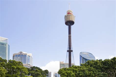 beautiful picture  sydney tower