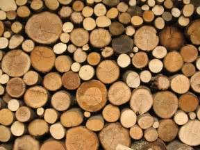ebay designer wood log wallpaper wallpapersafari
