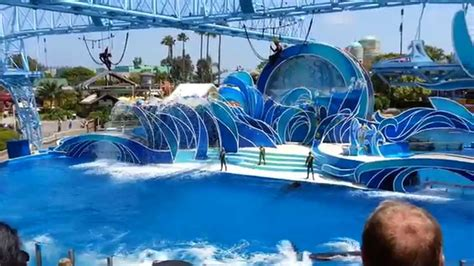 Blue Horizons Dolphin Show Sea World San Diego Full
