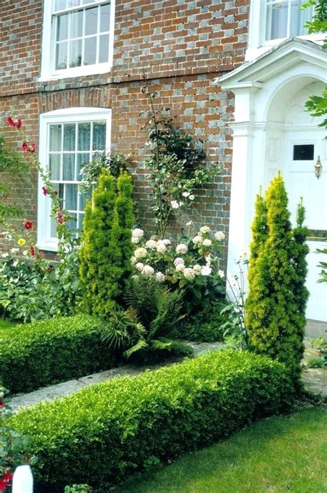 Best Shrubs For Front Of House Bushes Image Evergreen