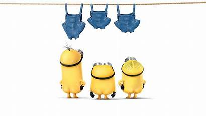 Minions Wallpapers Background Kevin Wall